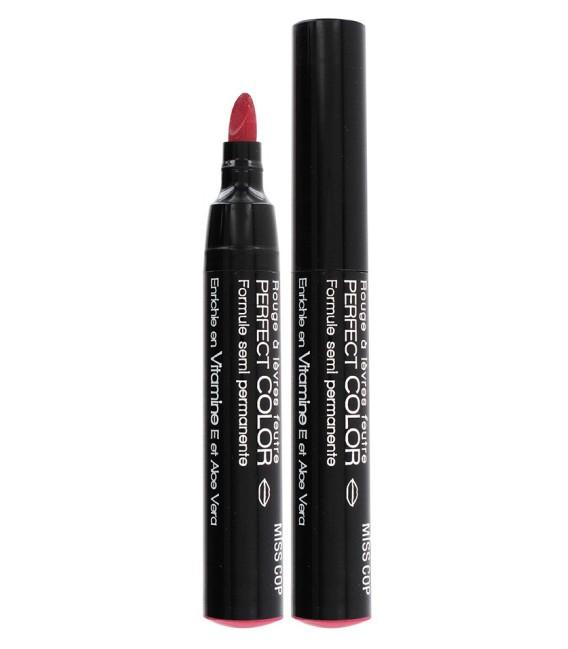 Lipstick felt PERFECT COLOR