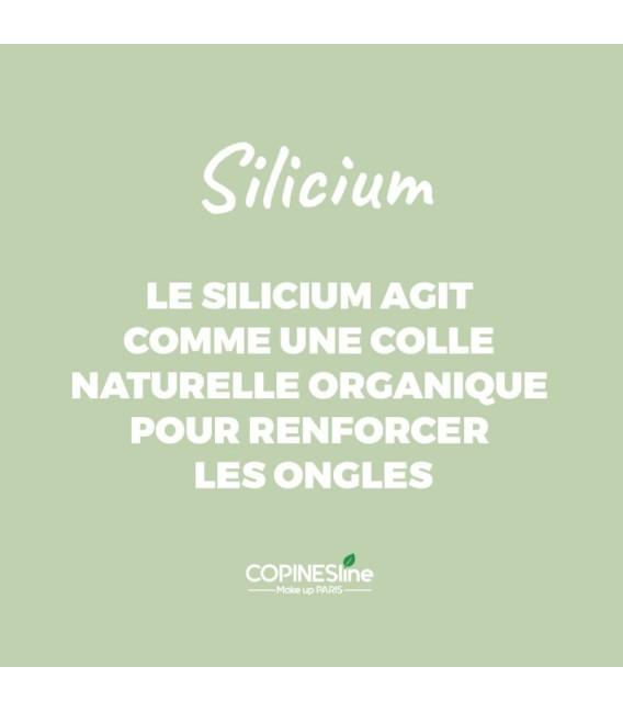 Vernis Silicium 02 Taupe
